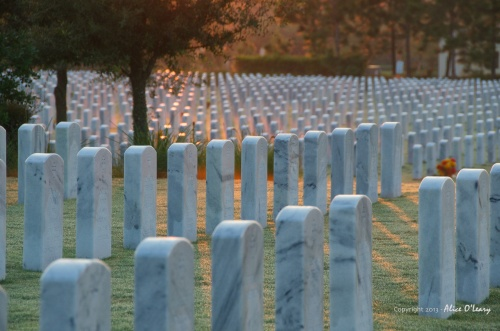 You could enjoy today's sunrise because of their sacrifice.  Don't forget to say thanks.
